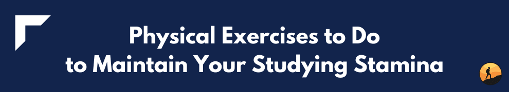 Physical Exercises to Do to Maintain Your Studying Stamina