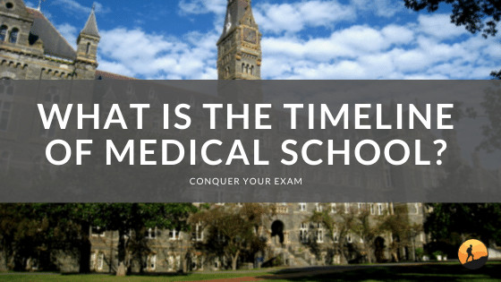 What is the Timeline of Medical School