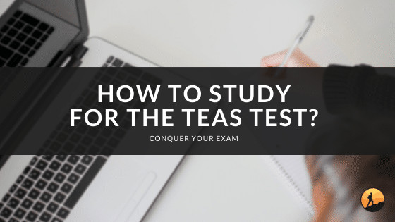 How to Study for the TEAS Test?