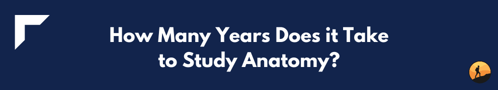 How Many Years Does it Take to Study Anatomy?